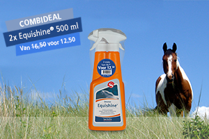Combideal 2x Equishine 500 ML